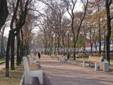 """Инсталляция 37. Серия """"Классика"""" для города Москва"""