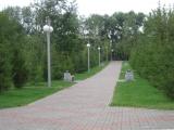 Продолжаются работы по комплексному благоустройству парка у ДК им. 1 мая