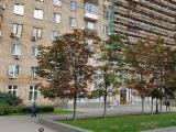 Поликлиника в г. Москва на Кутузовском проспекте