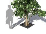 Решетка приствольная для кустарников, небольших деревьев